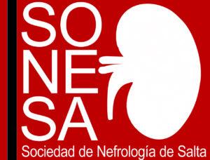 Logo SONESA